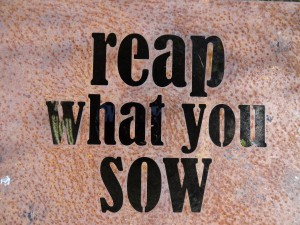 reap what you sow - authentic self